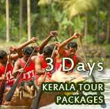 Kerala Tour Packages 2 nights 3 days